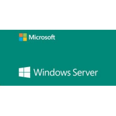 WINDOWS SERVER CAL 2019 ENG 5 CLT USER CAL OEM